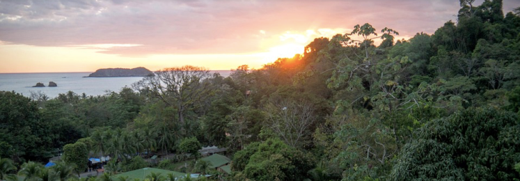Capture d'écran 2019-05-08 à 18.41.48