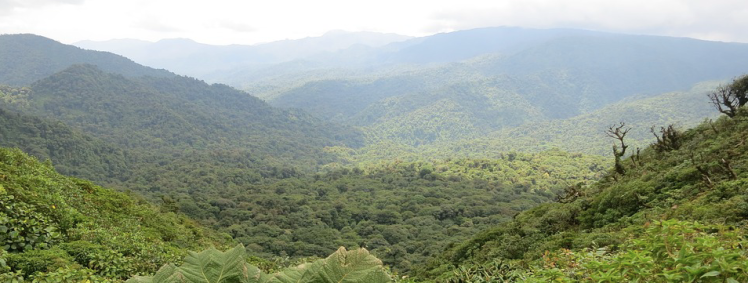 Capture d'écran 2019-05-08 à 20.07.58